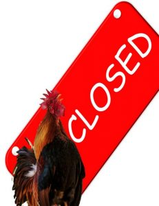Supply Chain Failure: KFC's Chicken Shortage