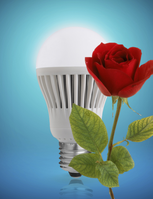 LED lights to grow roses, topics include sustainability, productivity, product design