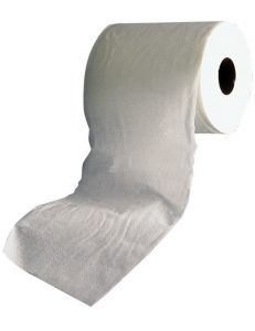 Toilet Paper: A Potential Bullwhip Example