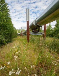 Decarbonizing with Renewable Natural Gas